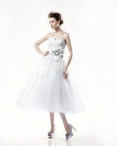 Picture of Danbury Wedding Dress - Blue by Enzoani 2011 Collection