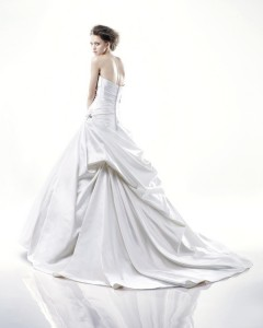 Picture of Back of Delaware Wedding Dress - Blue by Enzoani 2011 Collection