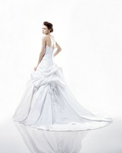 Picture of Back of Dijon Wedding Dress - Blue by Enzoani 2011 Collection