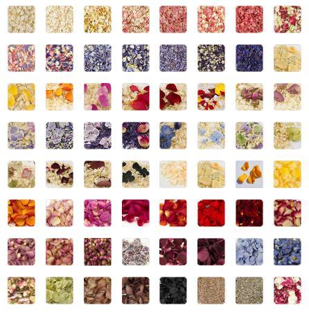 Shropshire Petals Pick 'n' Mix Natural Petal Confetti