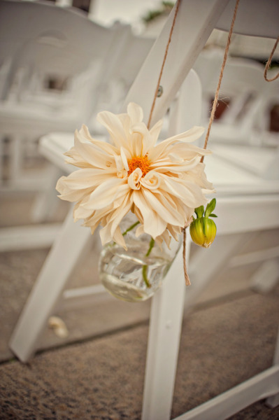 Flower hanging from chair - Picture by Captured by Aimee
