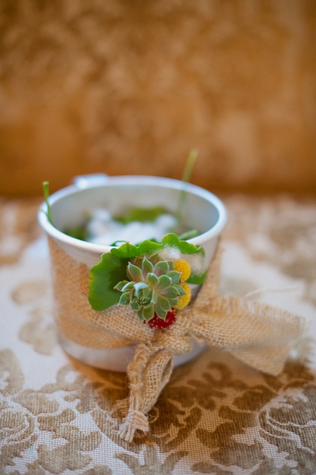 Succulent wedding decoration - Picture by Rojo Foto Design