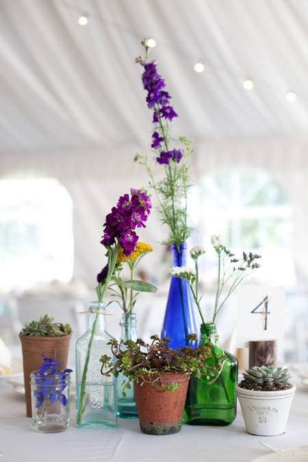 Bottles and pot plants on wedding table - Picture by Levi Stolove Photography