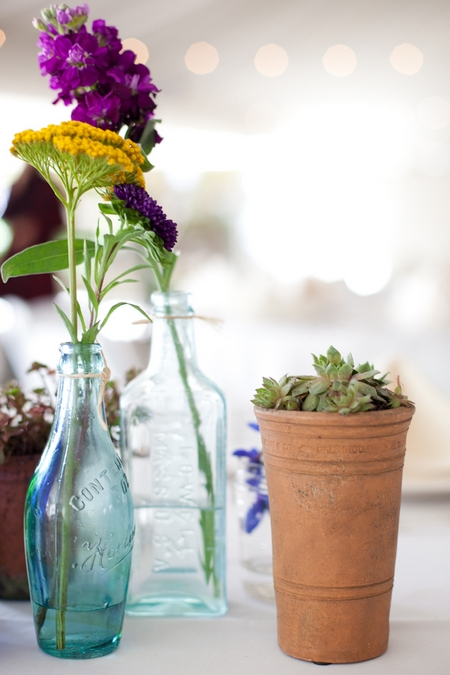 Close up of bottle and pot plant on wedding table - Picture by Levi Stolove Photography