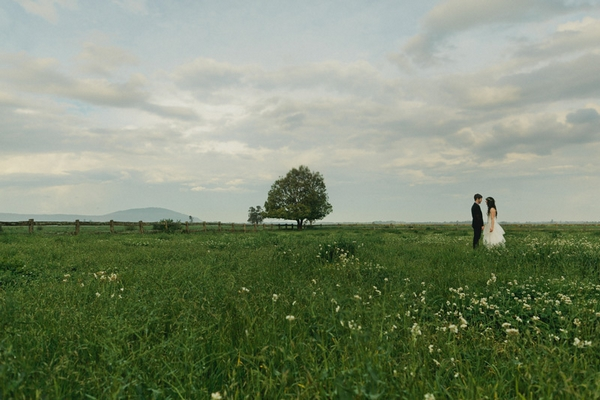 Bride and groom standing in a field with tree - Picture by Jonas Peterson Photography