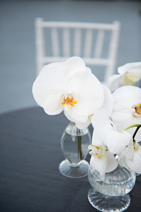 Orchid table flowers - Picture by Yvette Roman Photography