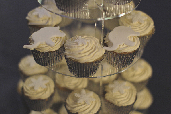 Cupcakes - Picture by York Place Studios