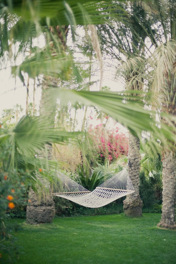 Hammock in tree - Picture by onelove photography