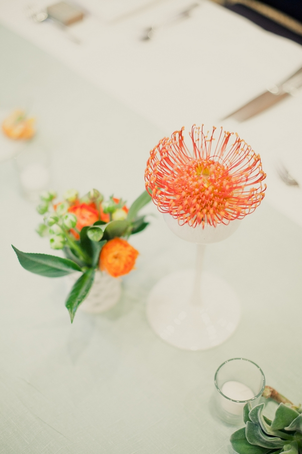 Unusual orange flower - Picture by onelove photography