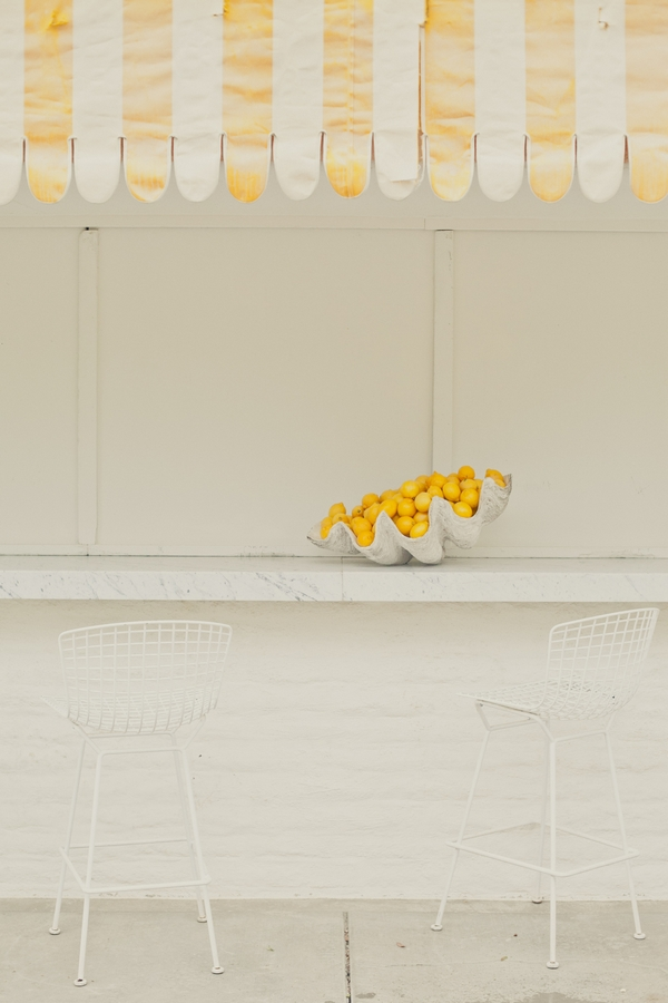 Shelf with a bowl of lemons - Picture by onelove photography