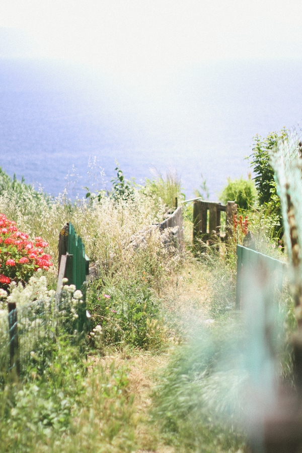 Foliage in front of Corsican coast line - Picture by DanielRM