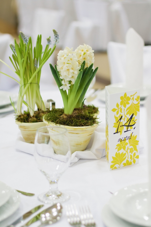 Pot plants on wedding table - A Spring Themed Wedding in Hungary
