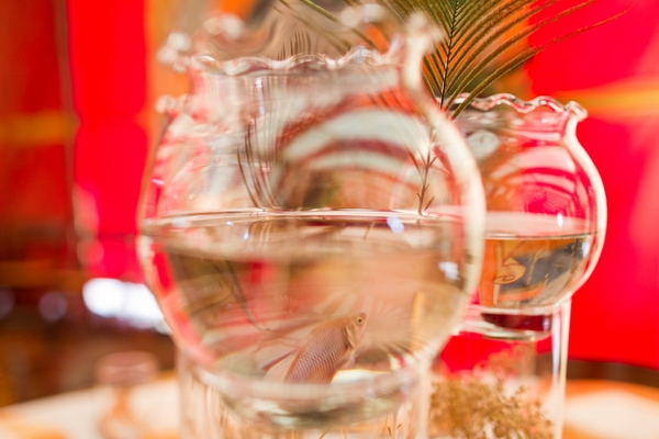 Glass table centrepiece with fish