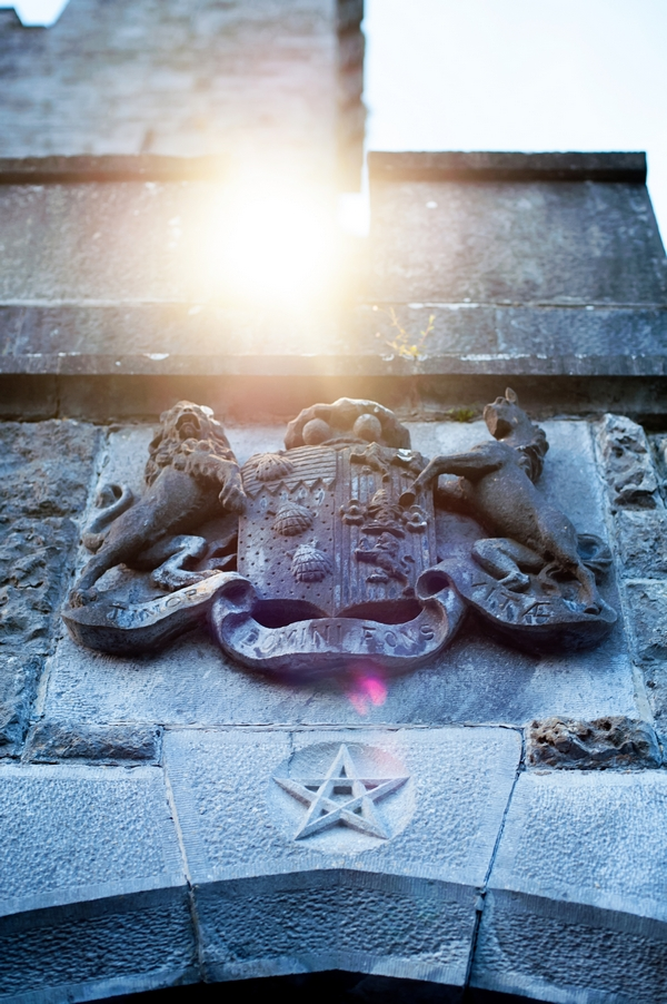 Crest on castle wall