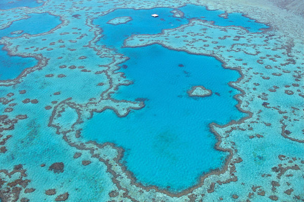 Heart Reef, Whitsunday Islands, Australia