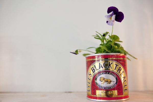 Flower in Black Treacle tin