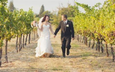 A Classically Styled Wedding at Eden Valley Orchards