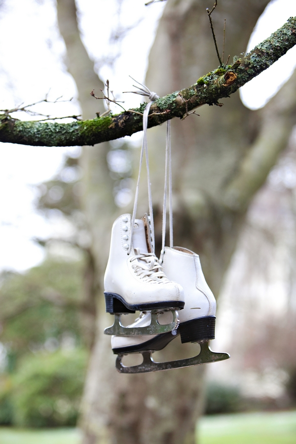 Ice skates hanging from tree