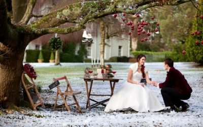 Festive Deer Park Winter Wedding Shoot