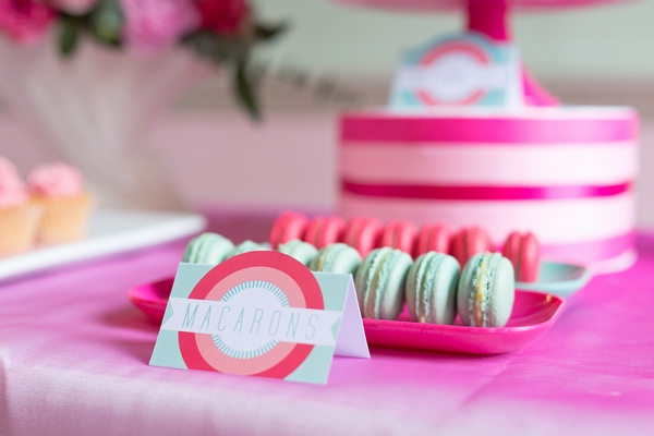 Pink and mint coloured macarons