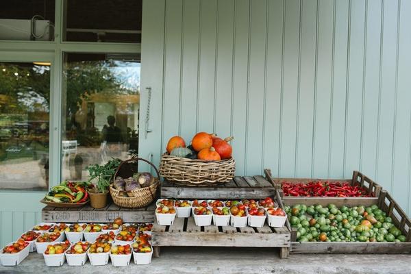 Fresh produce at Daylesford Farm
