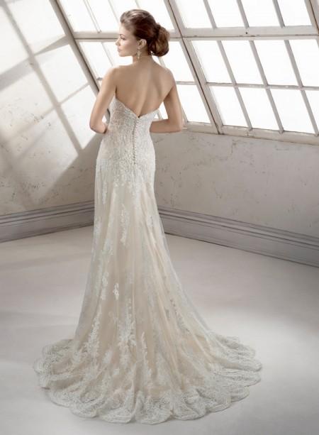 Back of Viera Wedding Dress - Sottero and Midgley Fall 2014 Bridal Collection