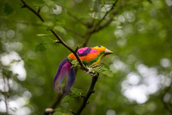 Felt bird in tree