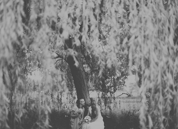 Brides under tree