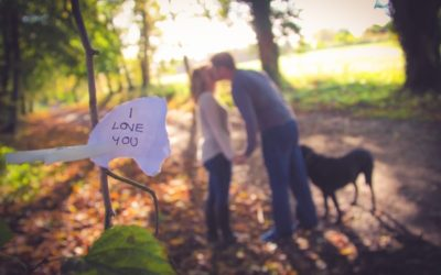 An Autumnal Engagement Shoot in Wiltshire