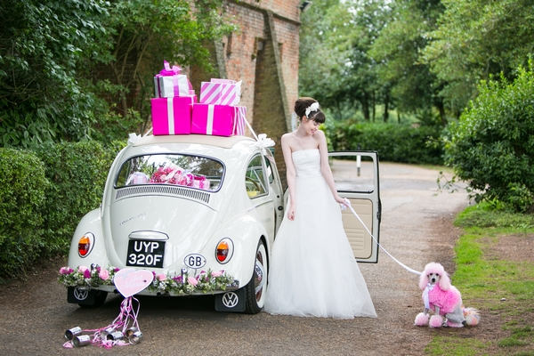 Bride and pink poodle next to VW Beetle