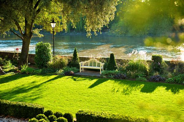 The Bingham Garden