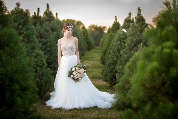 Bride on Christmas tree farm