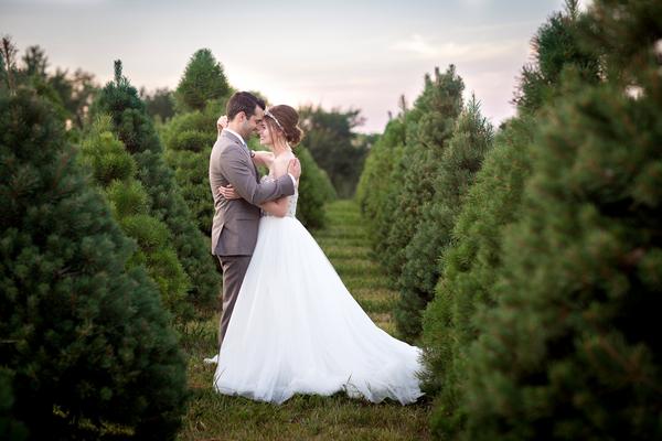 Bride and groom on Christmas tree farm