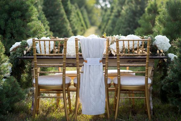 Wedding table on Christmas tree farm