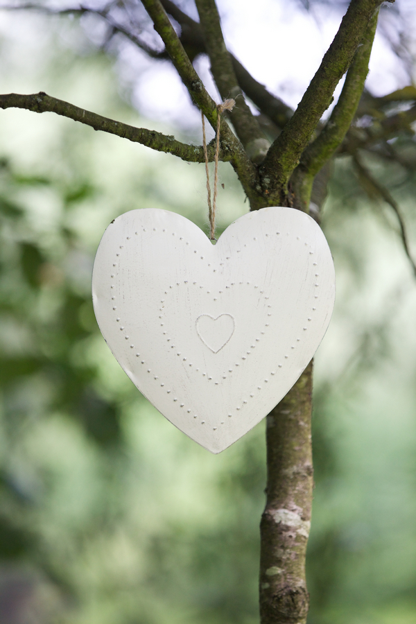 Heart hanging from tree