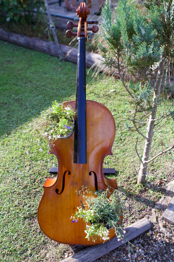 Cello with flowers in