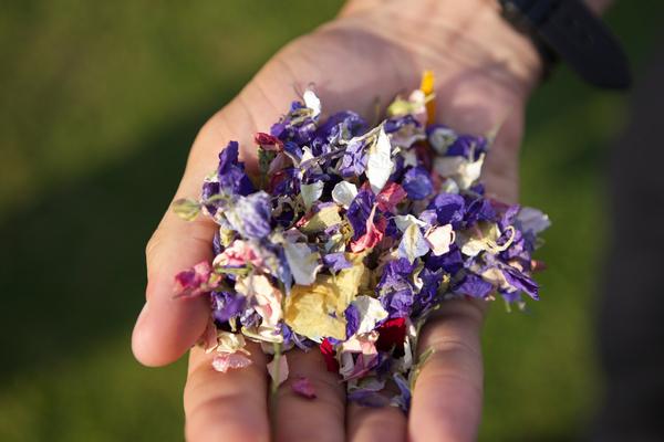 Handful of confetti