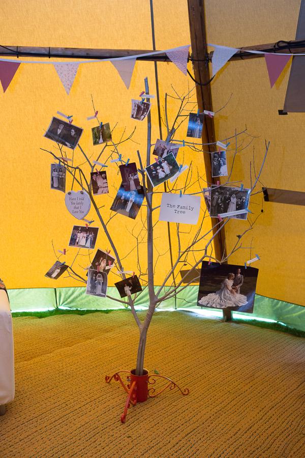 Photos hanging on tree