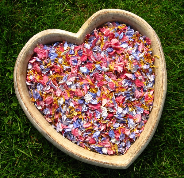 Delphinium and Wildflower Petals from The Real Flower Petal Confetti Company