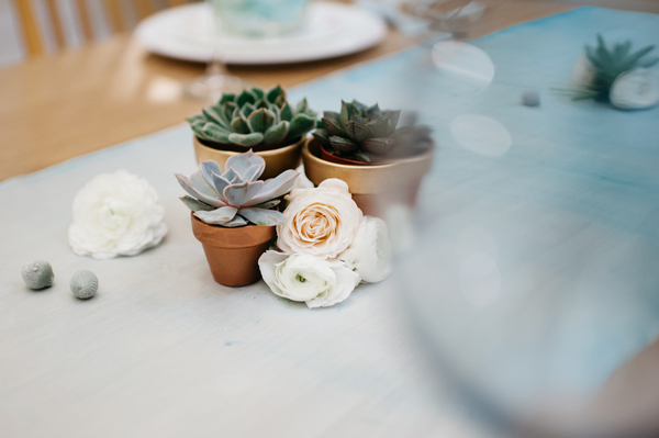 Succulents on table runner
