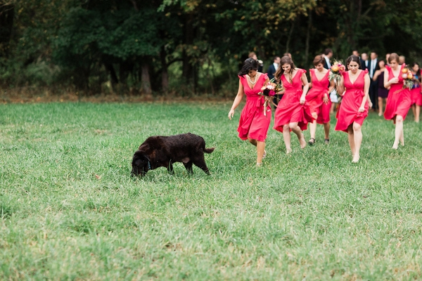 Bridesmaids in pink dresses walking across field with dog