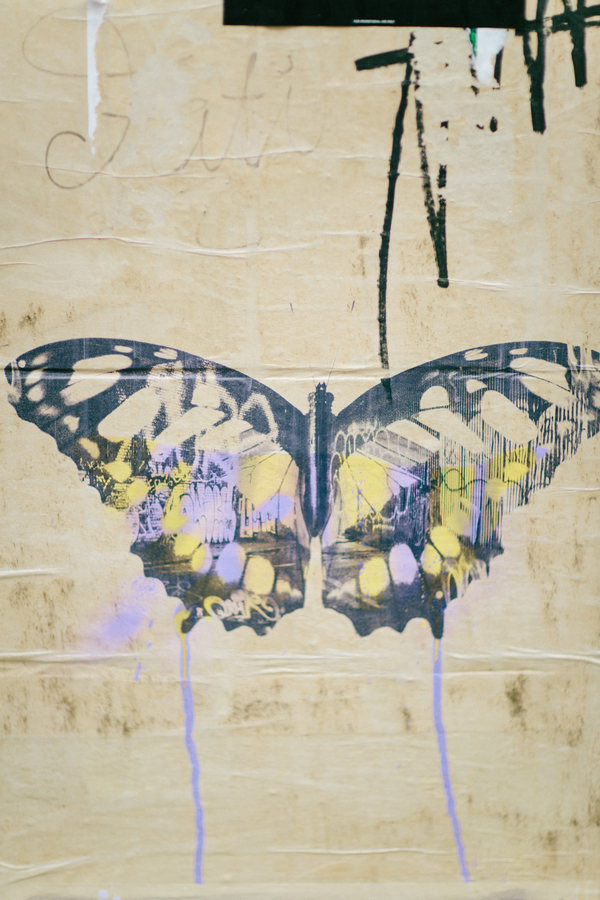 Picture of butterfly on wall in Shoreditch