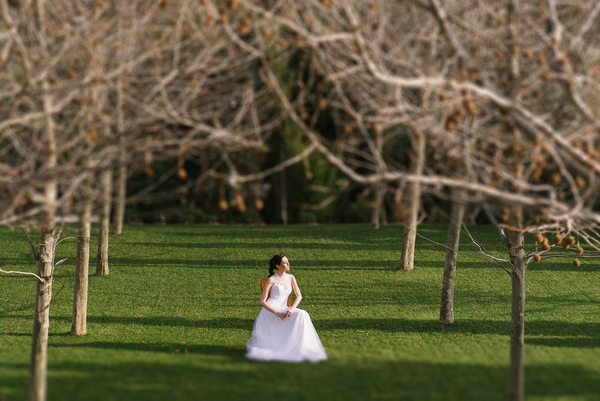 Bride sitting in chair surrounded by trees