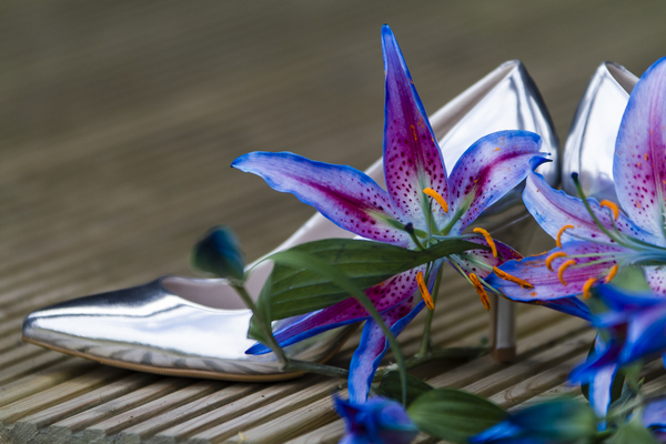 Oriental lily with silver wedding shoes