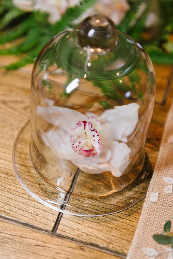Flower under cloche