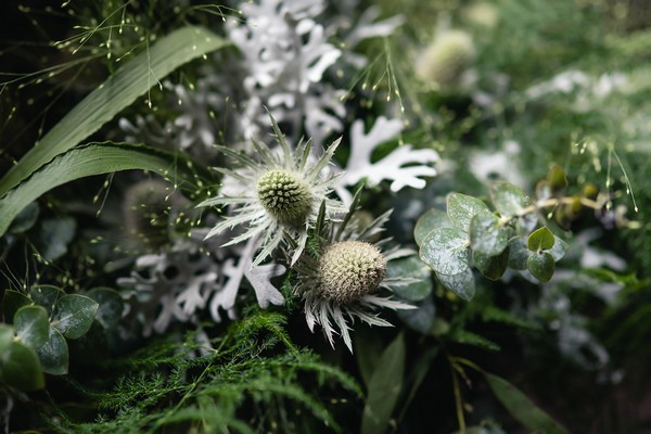 Close-Up of Foliage in Wedding Bouquet
