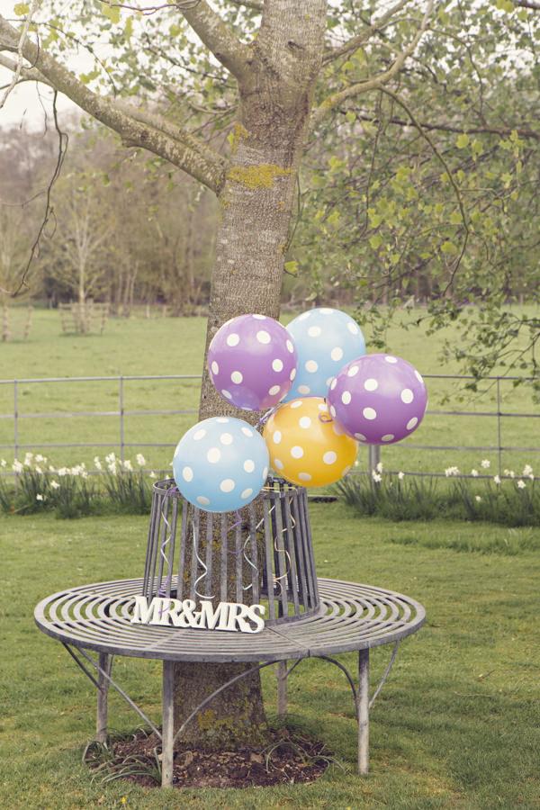 Spotty balloons tied to tree