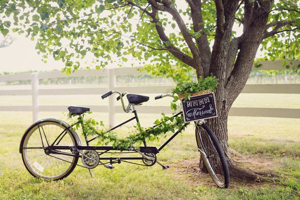 Vintage tandem bicycle