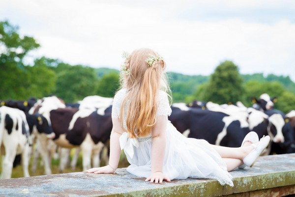 Flower girl sitting on wall looking at cows - Picture by Amanda Karen Photography