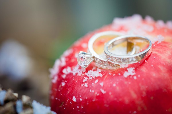 Wedding rings on apple - Picture by Amanda Karen Photography